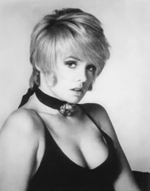 Image result for Joey Heatherton sexy