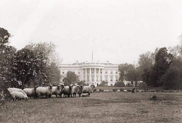 White House in  1920
