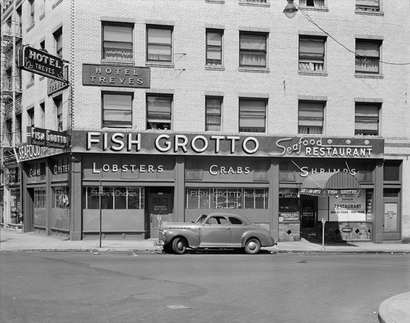 FISH GROTTO