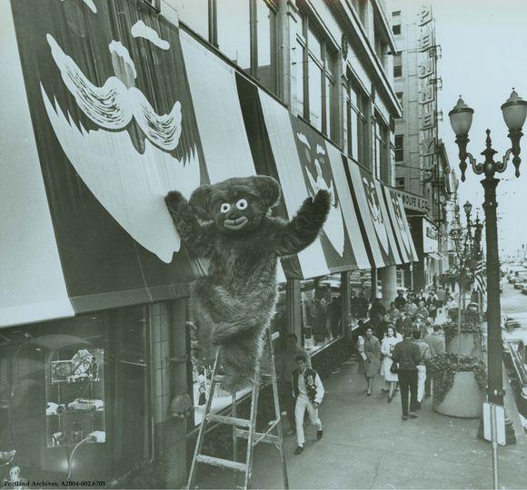 CINNAMON BEAR HANGING AROUND LIPMAN'S