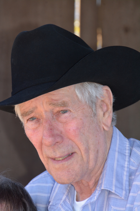 ACTOR ROBERT FULLER IS 84