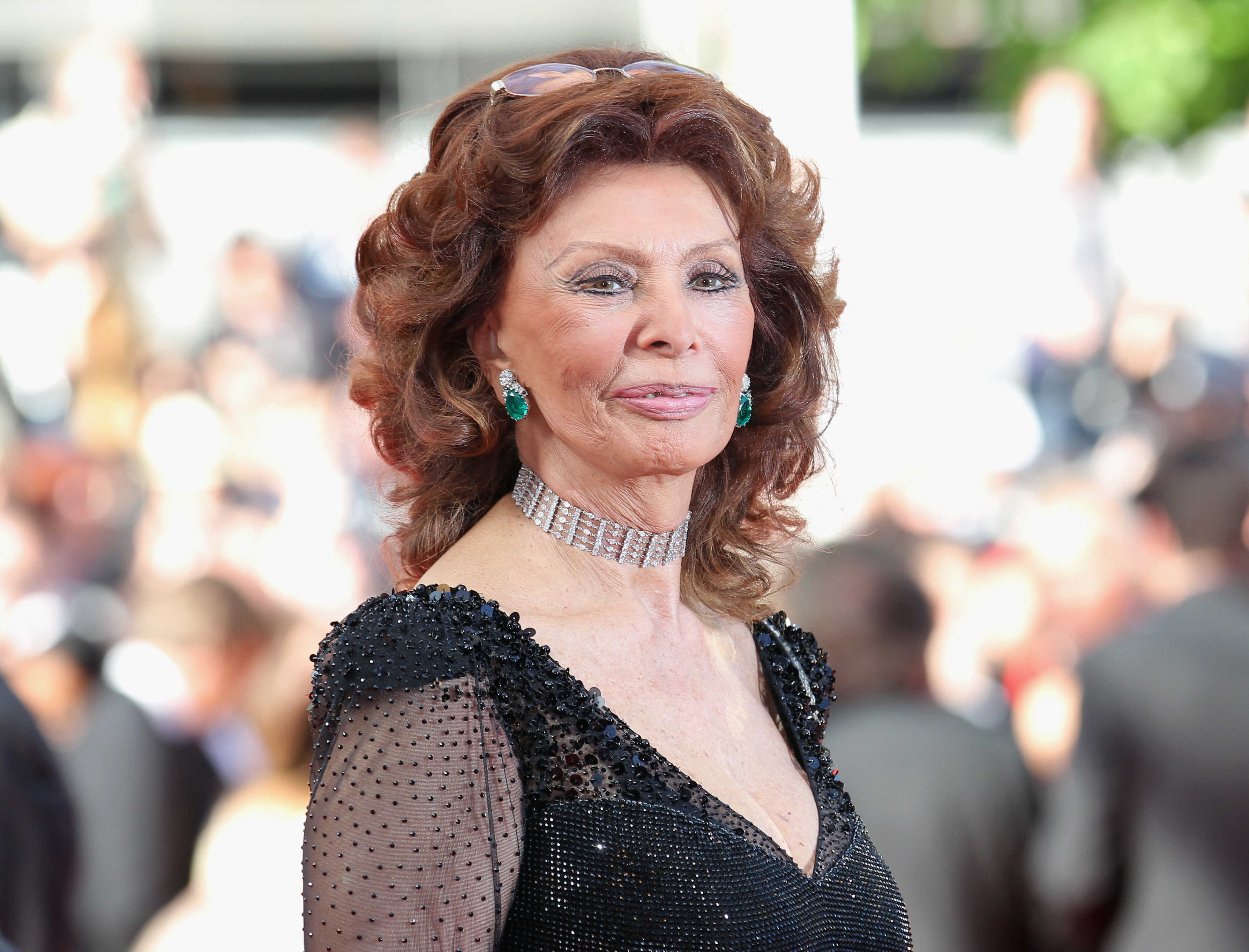 Stumptownblogger Sophia Loren Is 84 Today