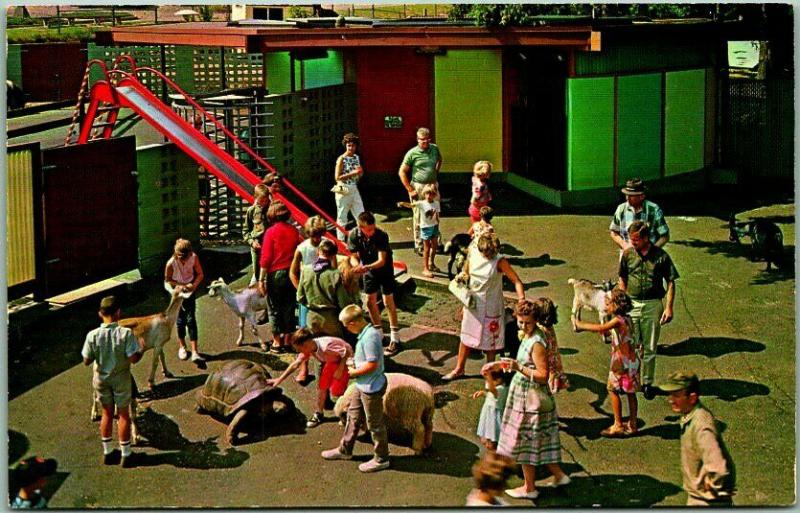 Chilkdrens zoo